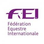 FEI_Logo_2015