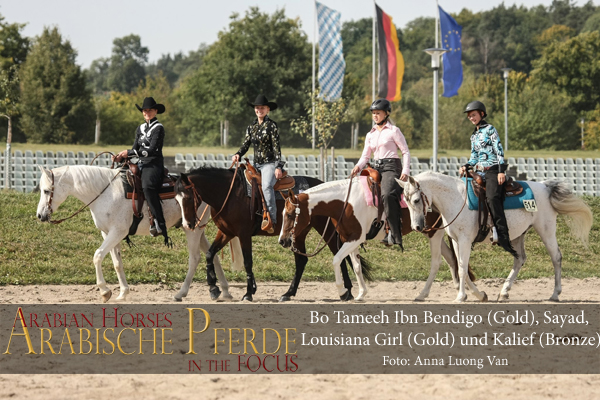 left to right: Katrin Hoffmann with Bo Tameeh Ibn Bendigo (Gold), Nadine Rack with the Shagya-Arabian Sayad (240,5 P.), Mara Stucki with Louisiana Girl (Gold) and Kalief with rider Emily Bell (Bronze).</br srcset=