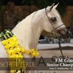 FM Gloria - IMG_5857-600px