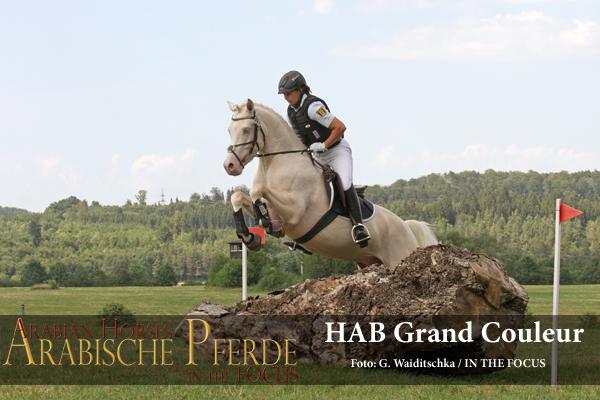 HAB Grand Couleur - IMG_8535 (c) Waiditschka-600px