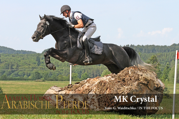 MK Crystal - IMG_8621-600px