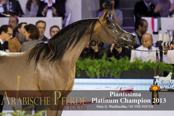 Pianissima (89) - IMG_6585 (c) Waiditschka-600px