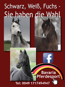Bavaria Pferdesport
