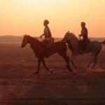 Endurance Qatar-330px