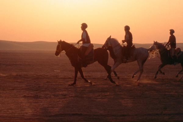 Endurance Qatar-600px