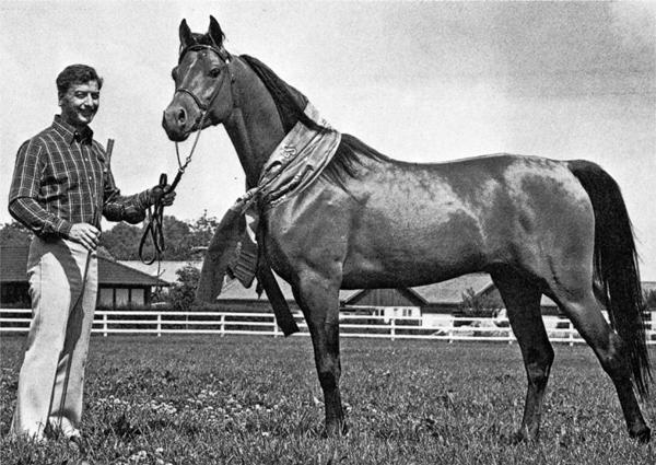 Erik Erlandsson mit Aladdin, der 1978 Schwedischer National-Champion wurde.