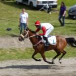 Rennen Karlsruhe - P1010173 (c) Frosch-330px