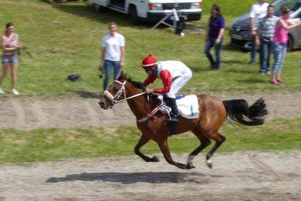 Madjy (v.Dormane) gewann das Rennen in Karlsruhe über 1800 m mit 9 Längen Abstand.Foto: B. Frosch