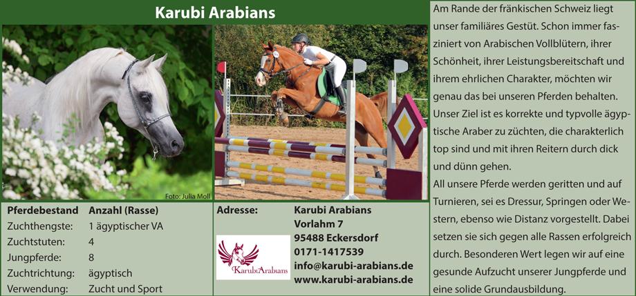 Karubi Arabians