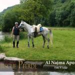 Al Najma Apoll - P1040554 (c) Peter Seipp-300px