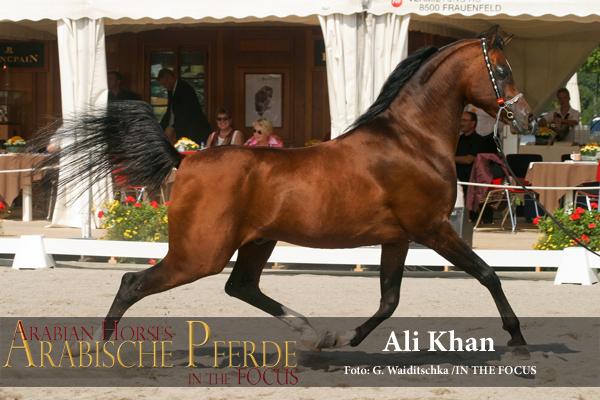 Ali Khan - IMG_5748 (c) Waiditschka