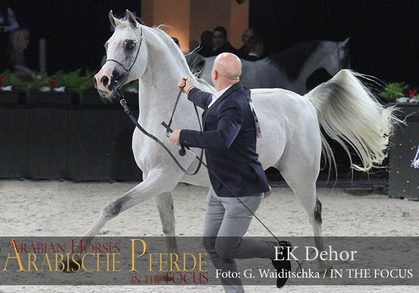 Top Ten EK Dehor (Psytadel / April Carol)