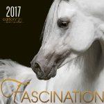 FASCINATION-2017_00