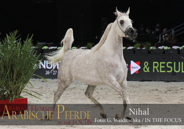 Top Ten Nihal (Shangai EA / GS Libera)