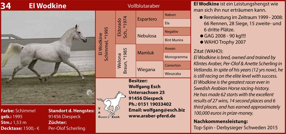 Wolfgang Esch