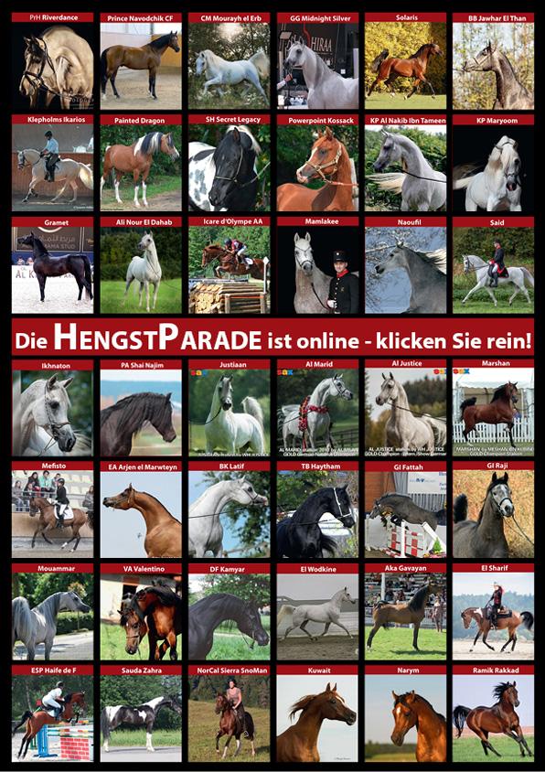 Hengstparade-V2