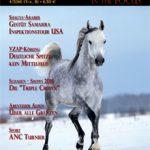 4-16 Heft Ausgabe Dez-V2.indd