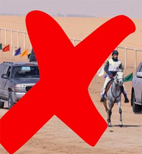 Endurance UAE-300px