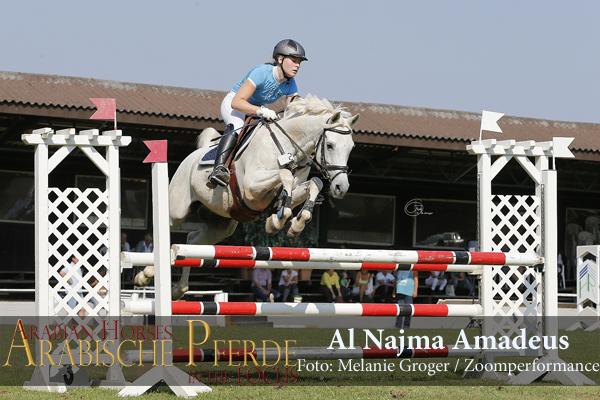 Al Najma Amadeus (c) Groger -6SZ4426-600px