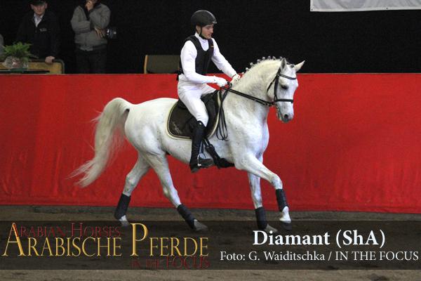 Diamant - IMG_9581 (c) Waiditschka-600px