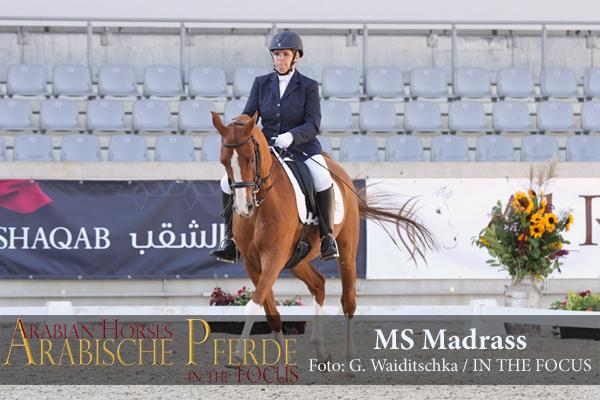 MS Madrass - IMG_6950 (c) Waiditschka-600px