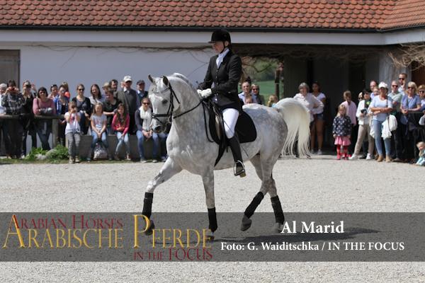 Al Marid - IMG_4383 (c) Waiditschka