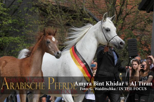 Amyra Bint Khidar + AJ Tiran - IMG_4972 (c) Waiditschka