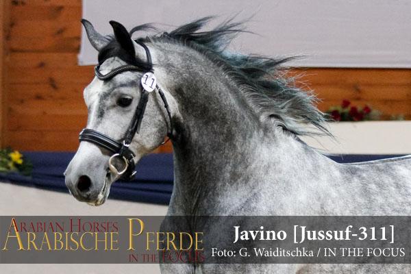 8-Javino (ShA) - IMG_0899 (c) Waiditschka