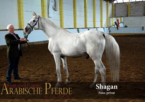 07 Shagan mit Huber 6909-600px