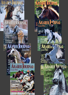 Araber Journal 2000 (8 Hefte)
