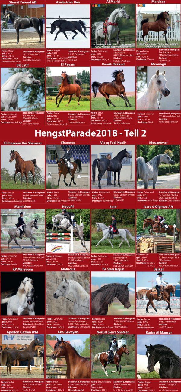 HengstParade2018 - Teil2
