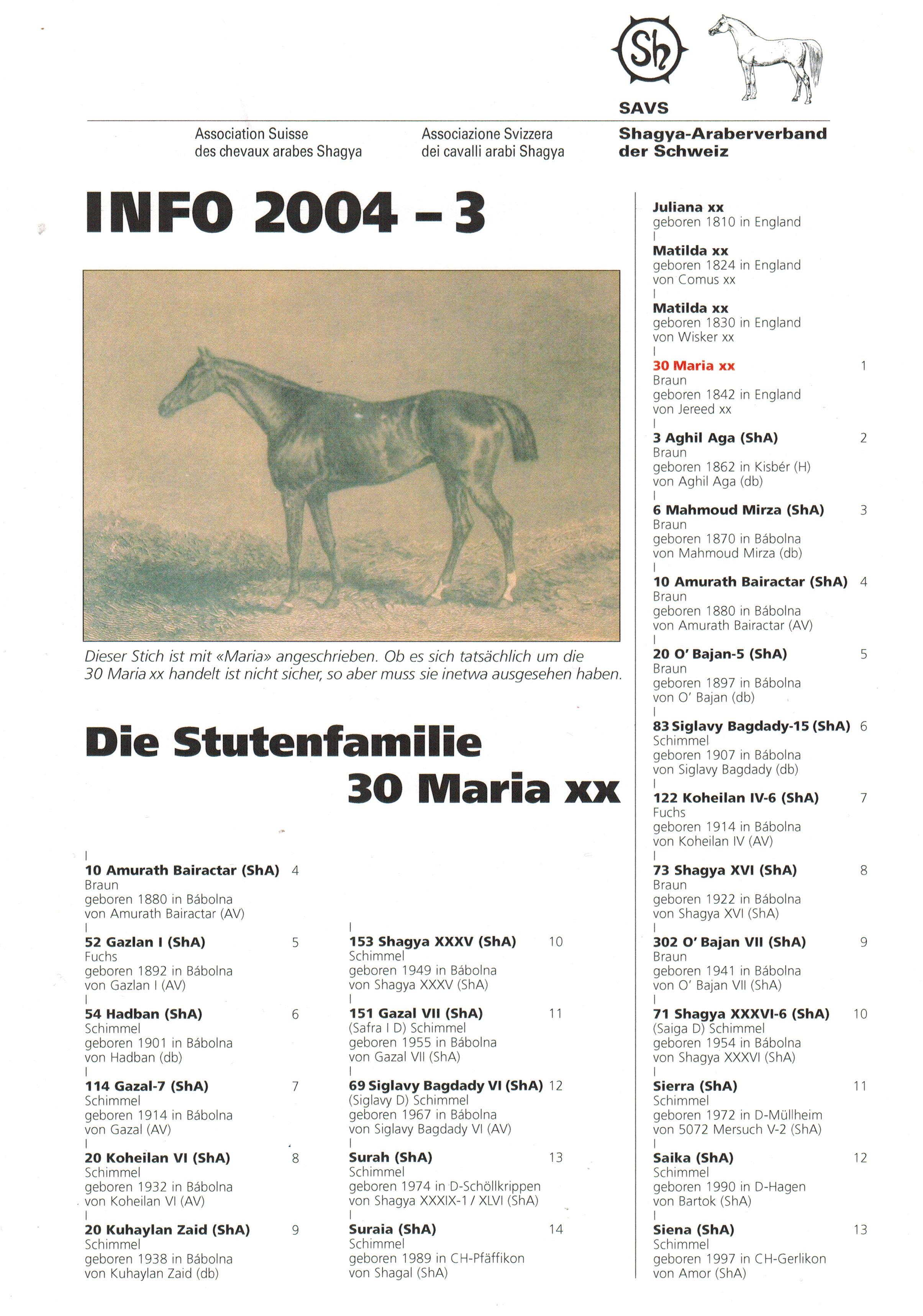 SAVS Info 2004-3