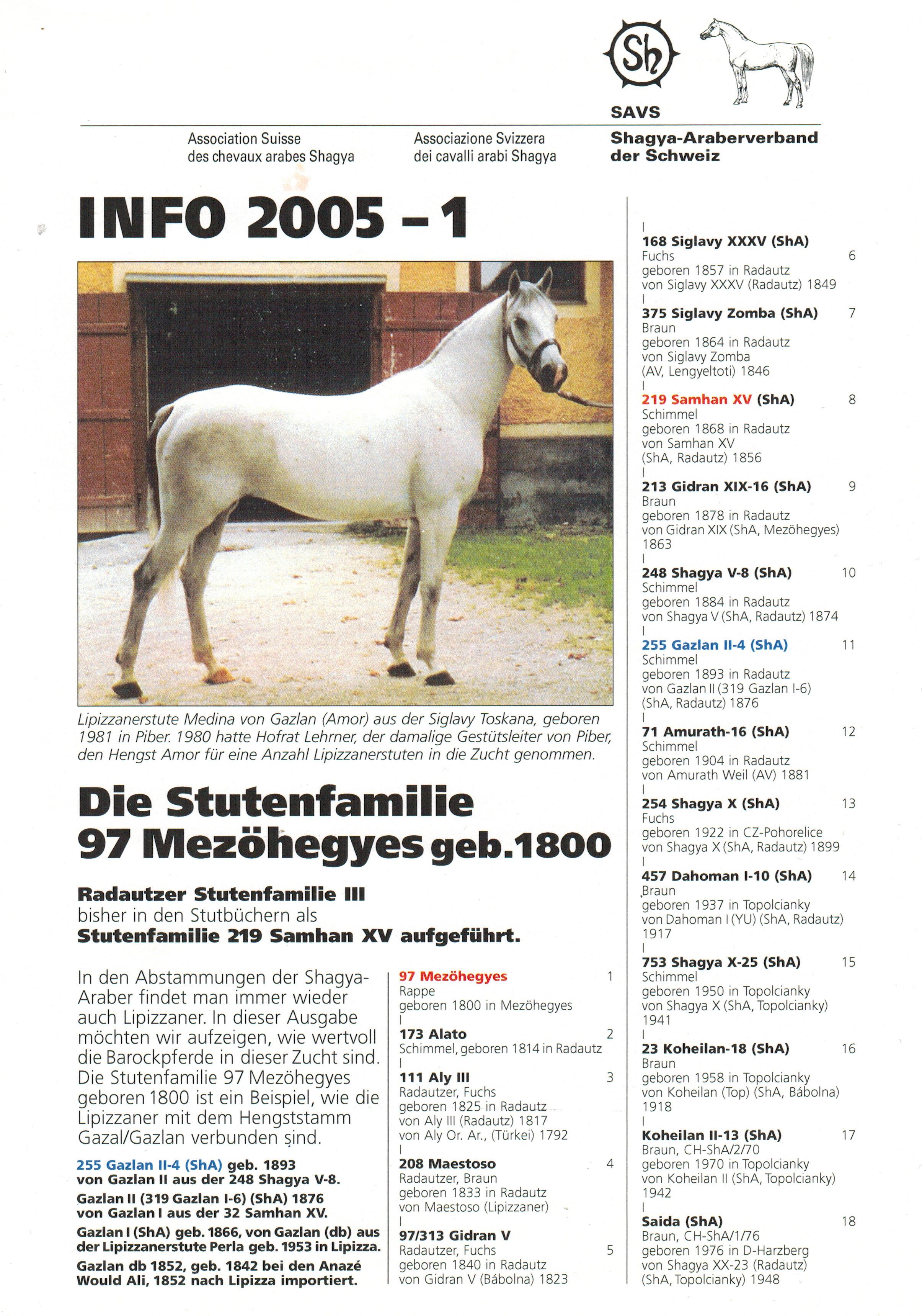 SAVS Info 2005-1