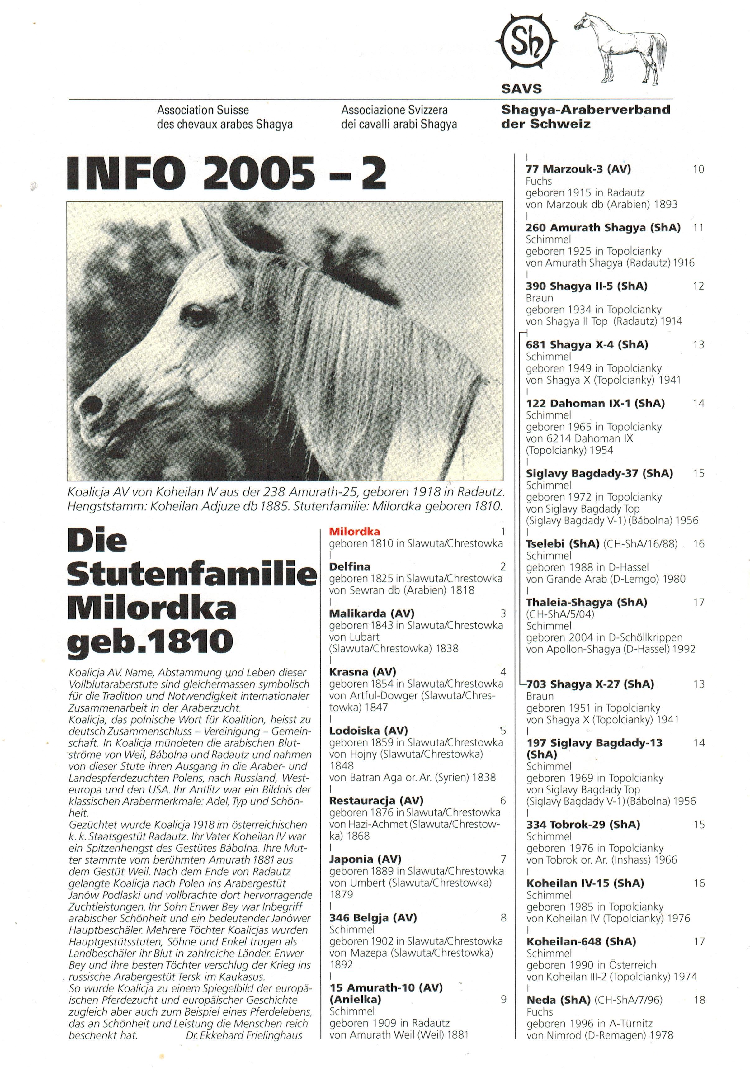 SAVS Info 2005-2