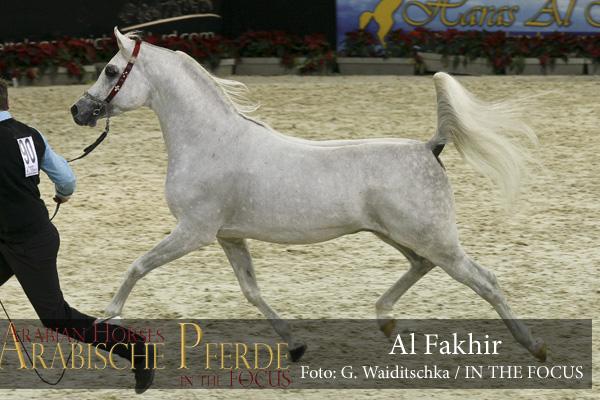 Al Fakhir (90) - IMG_8018 (c) Waiditschka-600px