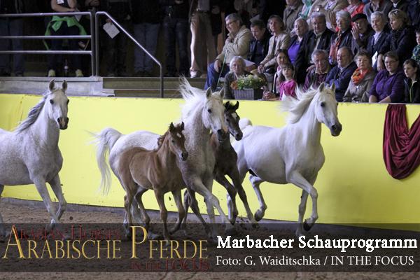 Marbacher Hoffest - IMG_2513 (c) Waiditschka