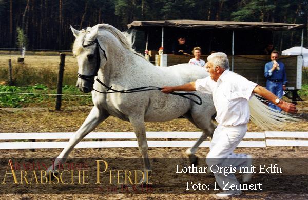 Neu Lothar Orgis-600px
