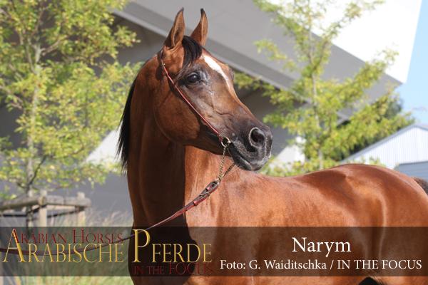 Narym - IMG_7101 (c) Waiditschka-600px