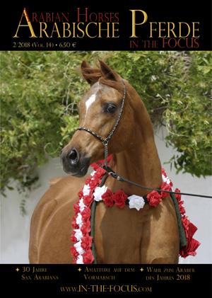 Arabische Pferde IN THE FOCUS 2/2018