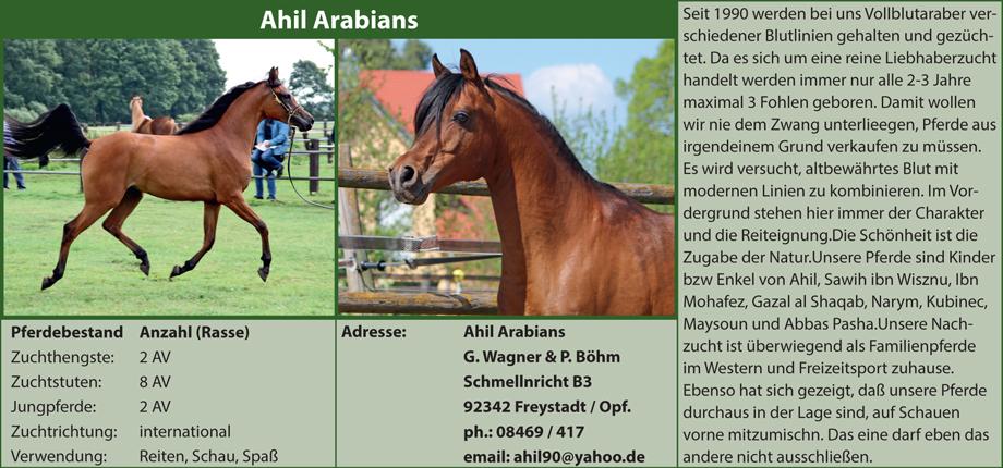 Ahil Arabians - Gerd Wagner