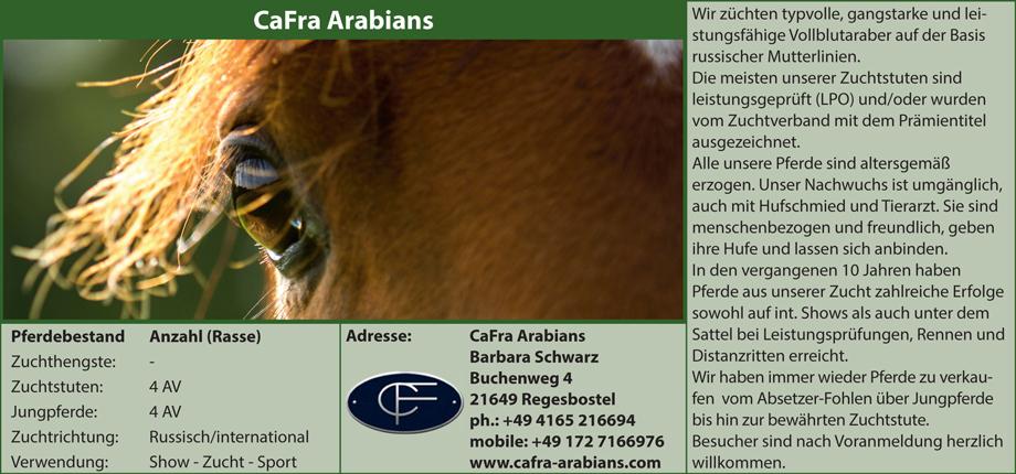 Cafra Arabians - Barbara Schwarz