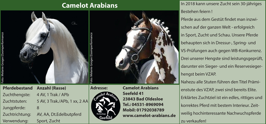 Camelot Arabians - Corinna Knaack-Lindemann