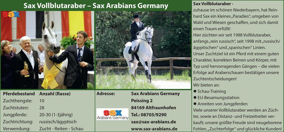 Sax Arabians - Reinhard Sax