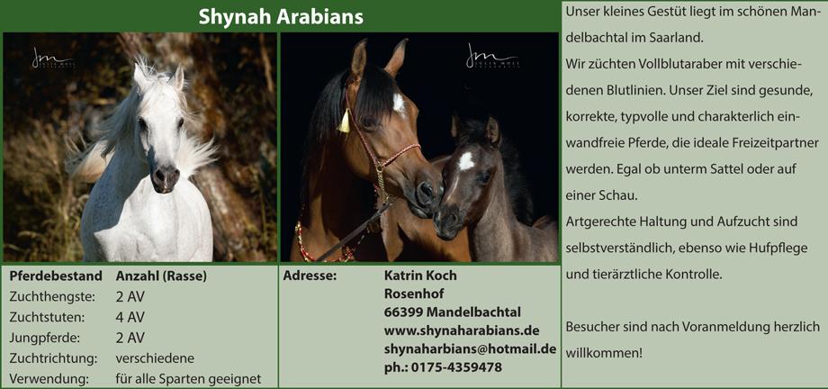 Shynah Arabians - Katrin Koch