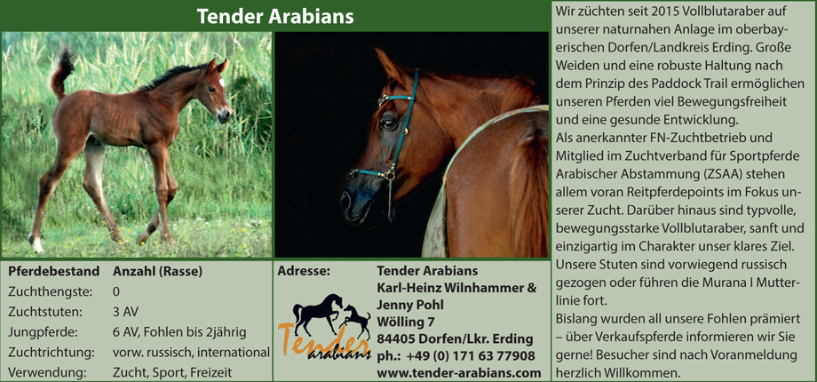 Tender Arabians - Jenny Pohl