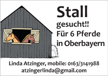 Linda Atzinger - Stallsuche