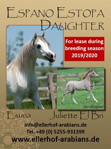 Ellerhof Arabians - Esuna