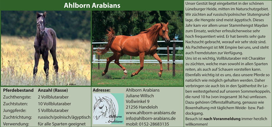 Ahlborn Arabians - Juliane Willsch
