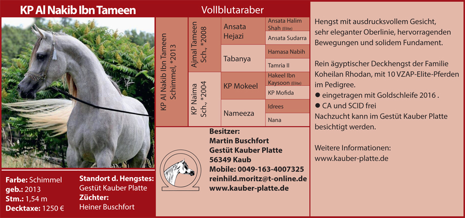 Martin Buschfort - KP Al Nakim