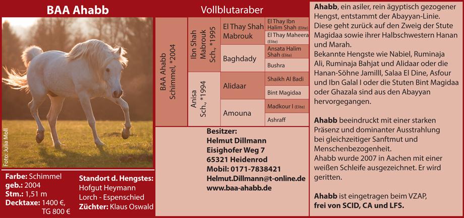 Helmut Dillmann - BAA Ahabb